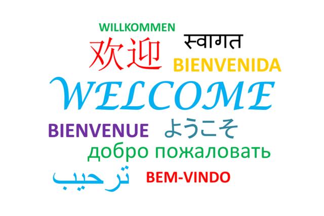 为每种语言编写WordPress文章