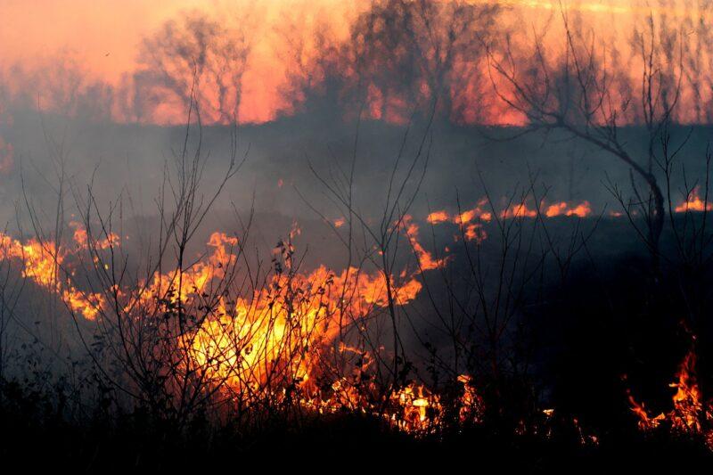 米カリフォルニア州、オレゴン州の山林火災動画まとめ