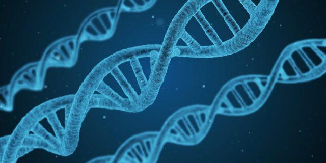 重症化に関わる遺伝子